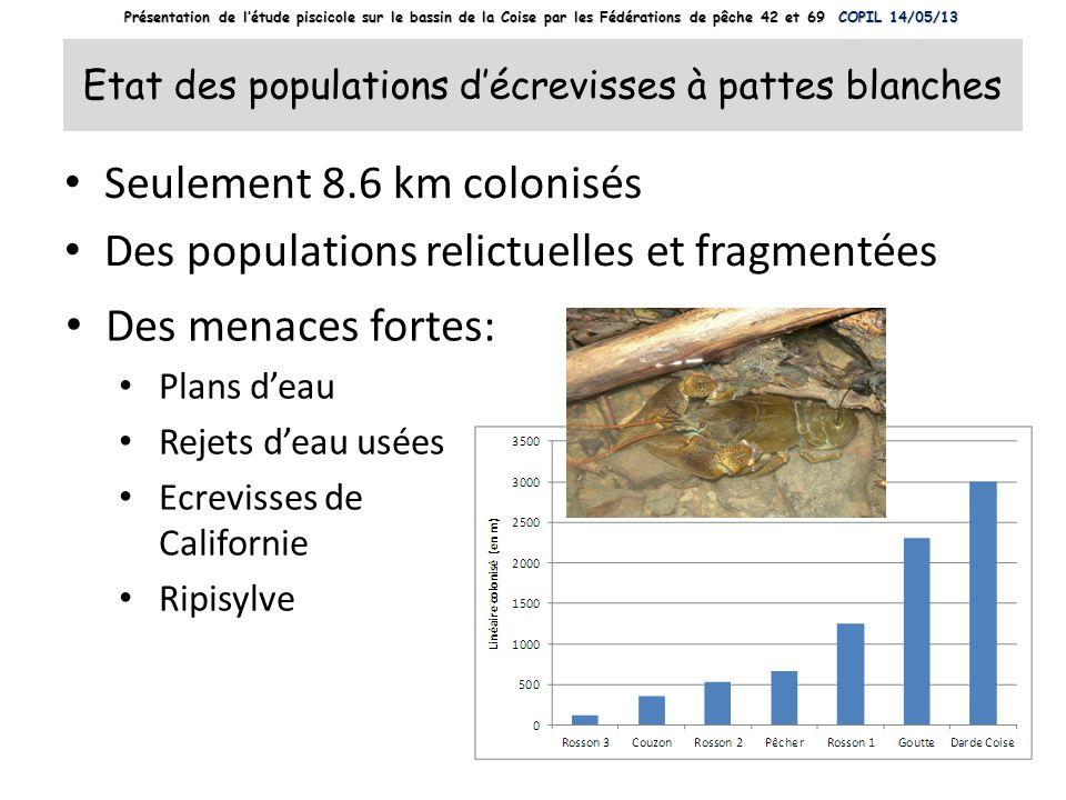 Etat des populations d'écrevisses à pattes blanches