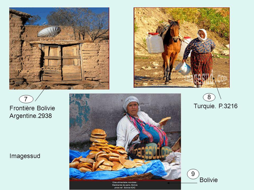 8 7 Turquie. P.3216 Frontière Bolivie Argentine.2938 Imagessud 9 Bolivie