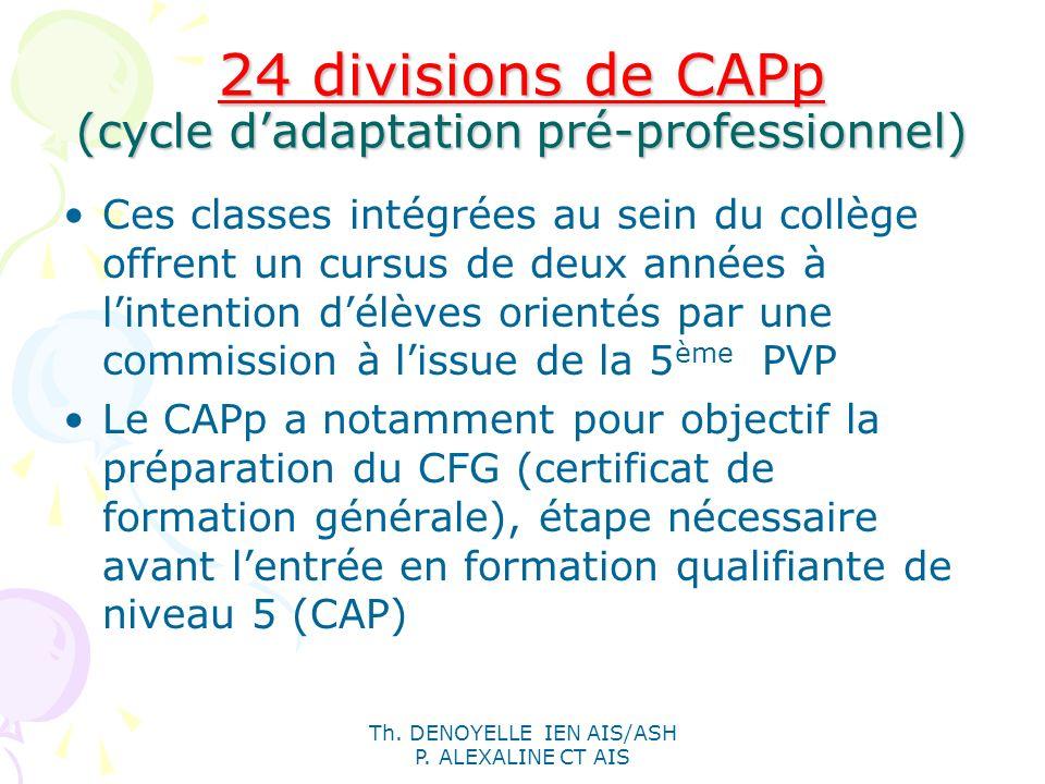 24 divisions de CAPp (cycle d'adaptation pré-professionnel)