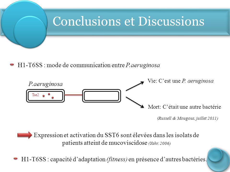 Conclusions et Discussions