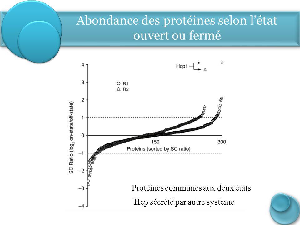 Abondance des protéines selon l'état ouvert ou fermé