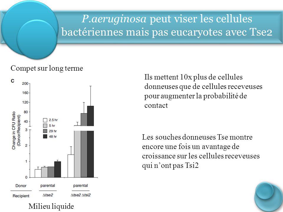 P.aeruginosa peut viser les cellules bactériennes mais pas eucaryotes avec Tse2