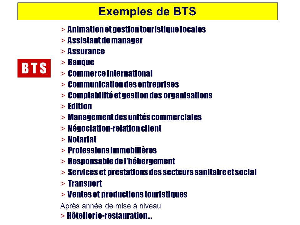 B T S Exemples de BTS > Animation et gestion touristique locales
