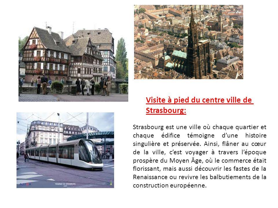 Visite à pied du centre ville de Strasbourg: