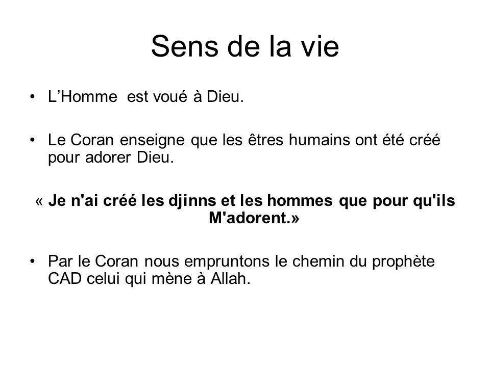 « Je n ai créé les djinns et les hommes que pour qu ils M adorent.»