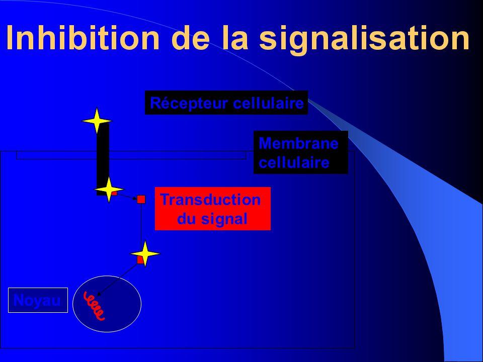 Récepteur cellulaire Membrane cellulaire Transduction du signal Noyau