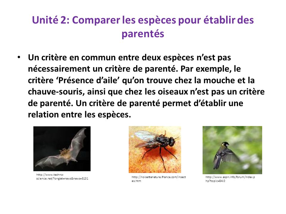 Unité 2: Comparer les espèces pour établir des parentés