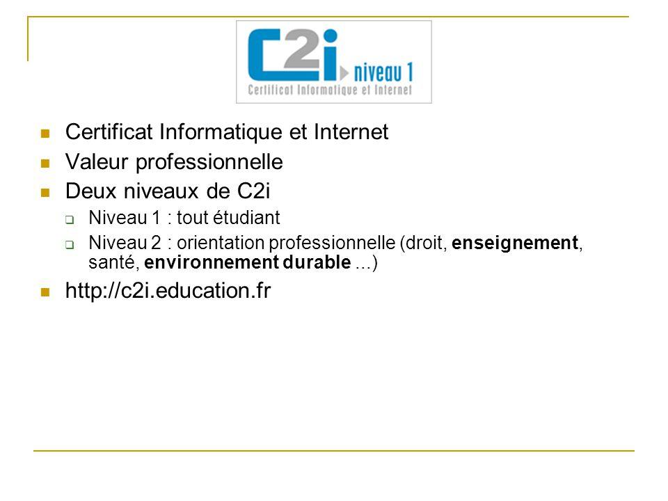 Certificat Informatique et Internet Valeur professionnelle