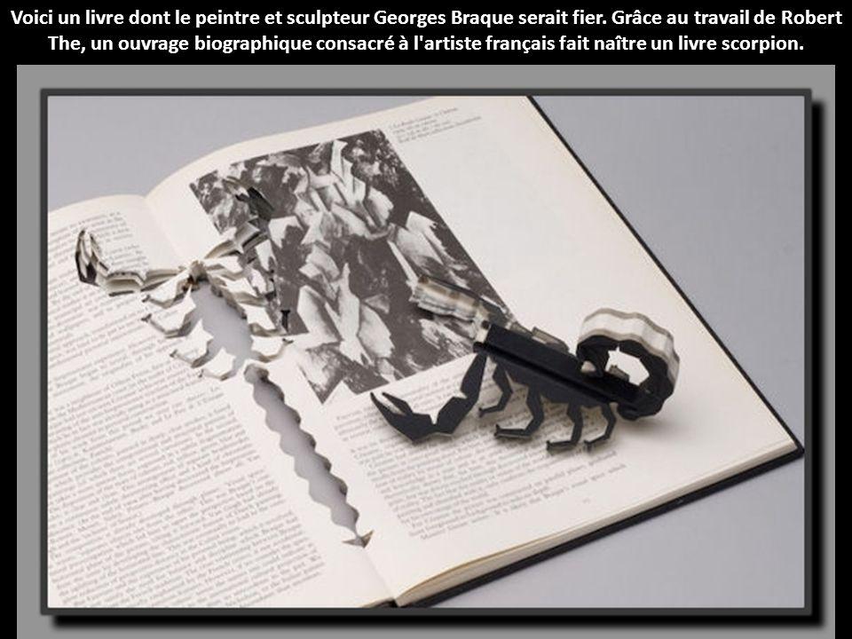 Voici un livre dont le peintre et sculpteur Georges Braque serait fier