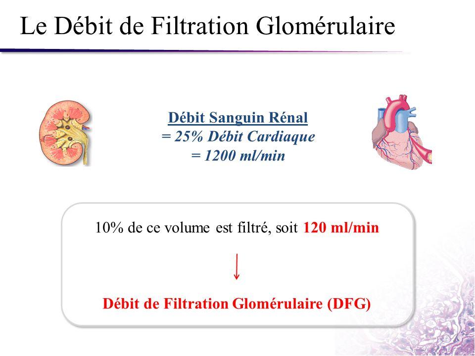 Le Débit de Filtration Glomérulaire