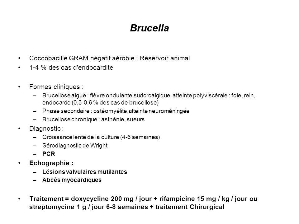 Brucella Coccobacille GRAM négatif aérobie ; Réservoir animal
