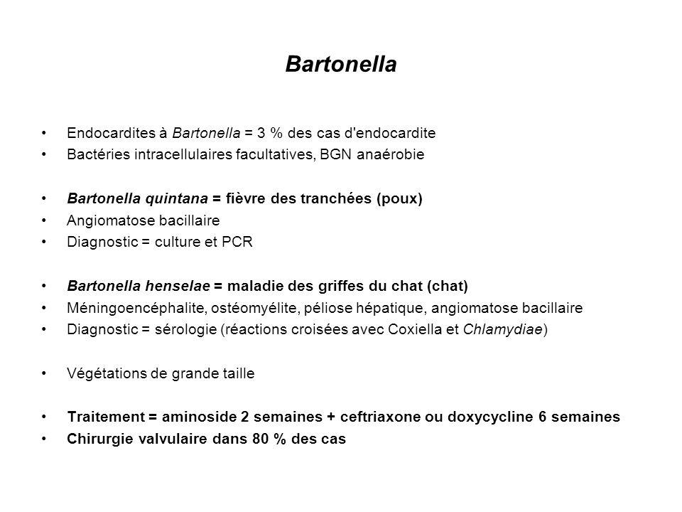 Bartonella Endocardites à Bartonella = 3 % des cas d endocardite