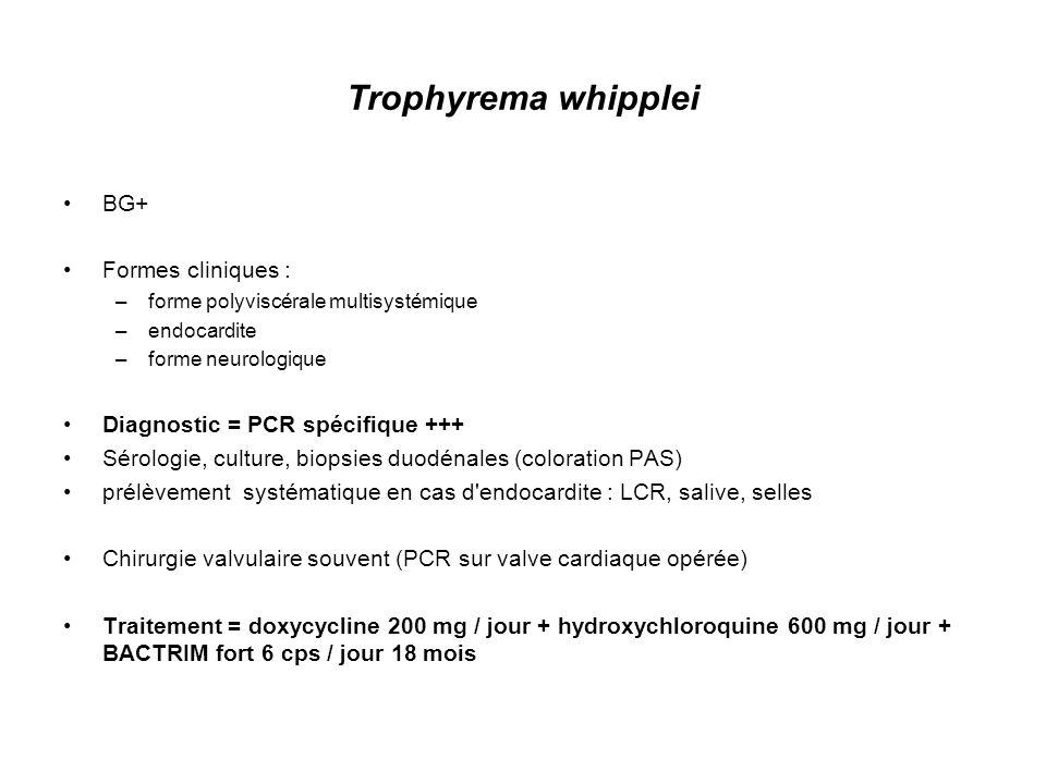 Trophyrema whipplei BG+ Formes cliniques :
