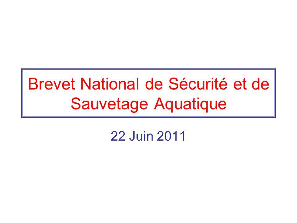 Brevet National de Sécurité et de Sauvetage Aquatique