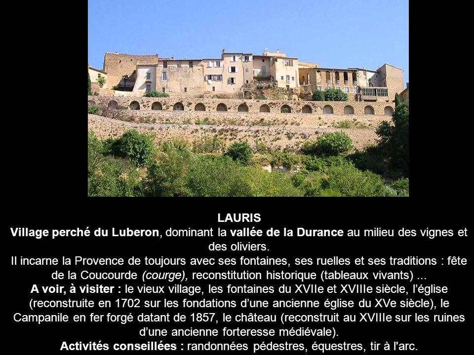 LAURIS