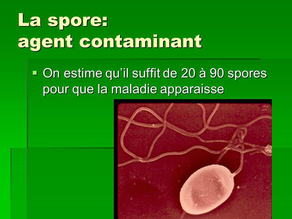 La spore: agent contaminant