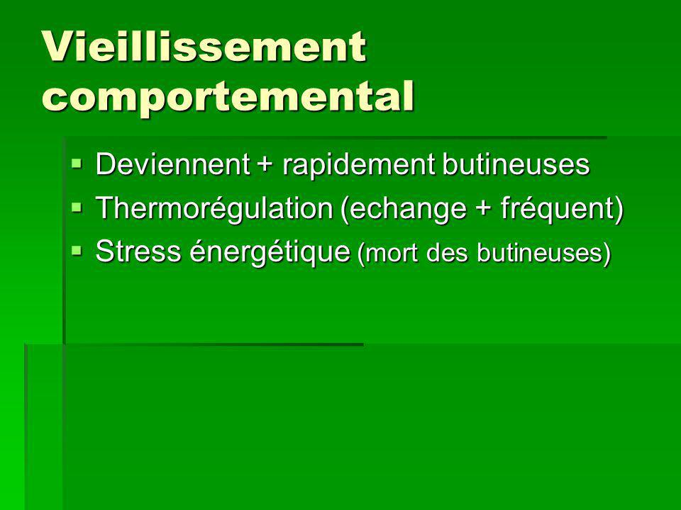 Vieillissement comportemental
