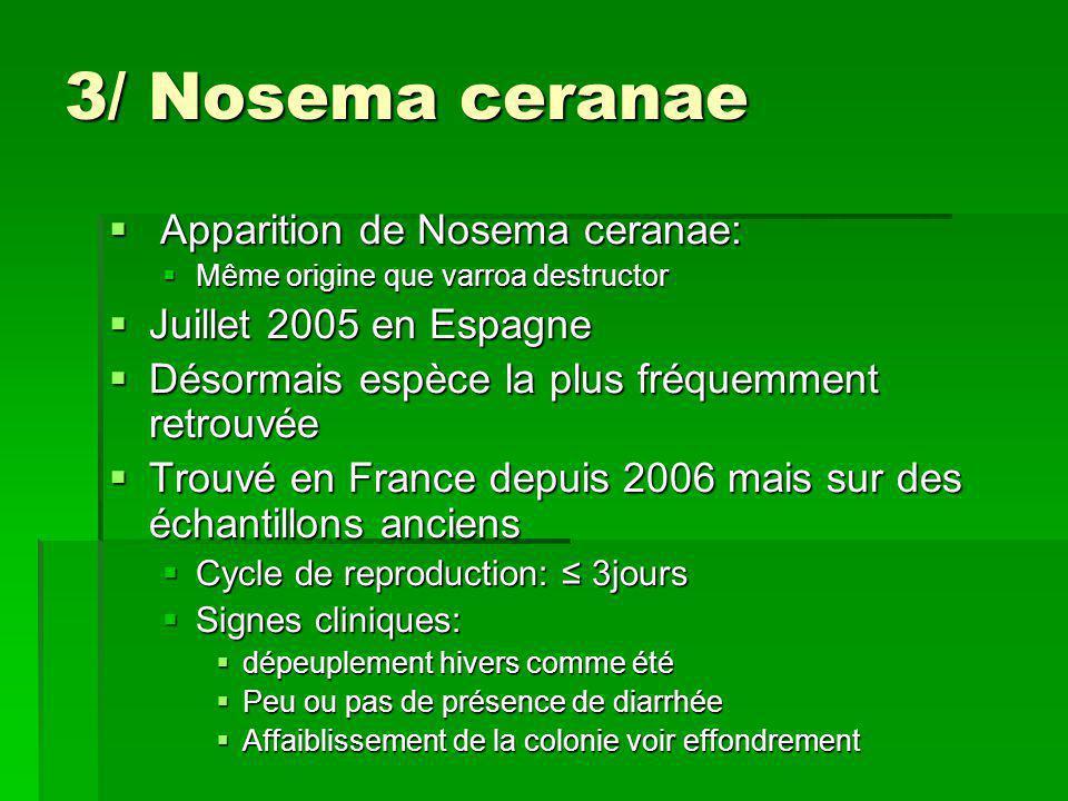 3/ Nosema ceranae Apparition de Nosema ceranae: