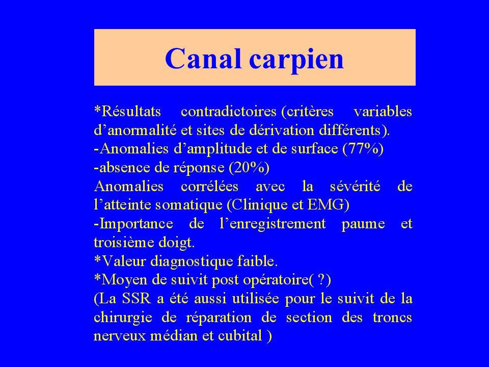 Canal carpien