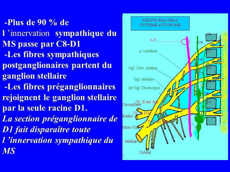 -Plus de 90 % de l 'innervation sympathique du MS passe par C8-D1