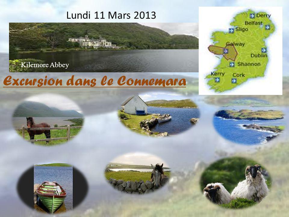 Excursion dans le Connemara
