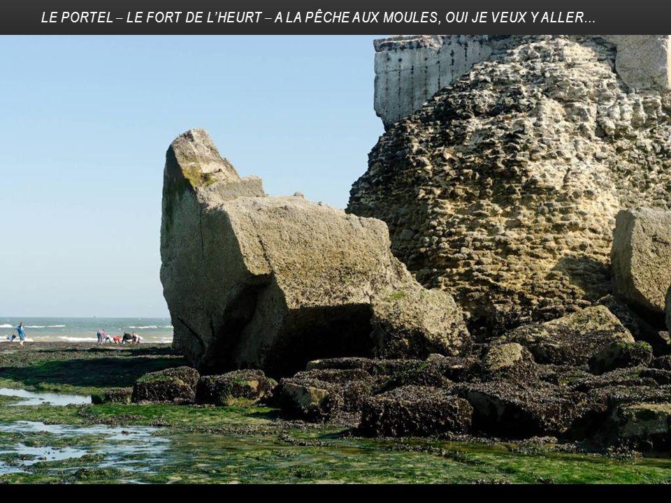 LE PORTEL – LE FORT DE L'HEURT – A LA PÊCHE AUX MOULES, OUI JE VEUX Y ALLER…