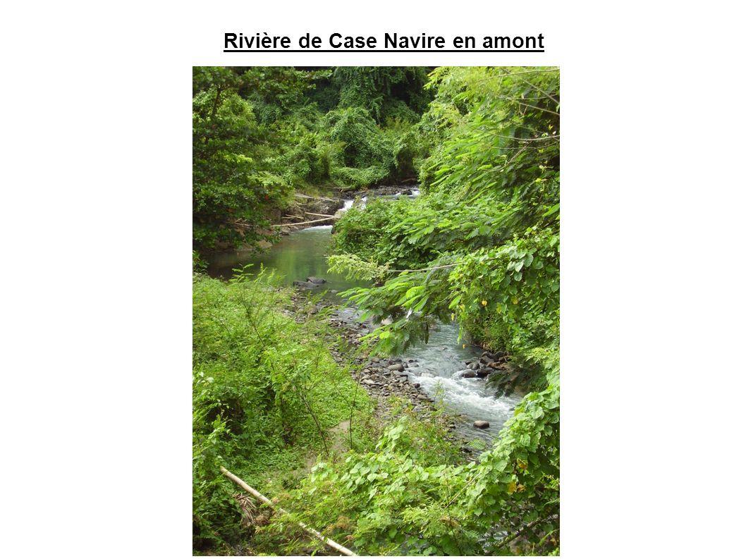 Rivière de Case Navire en amont