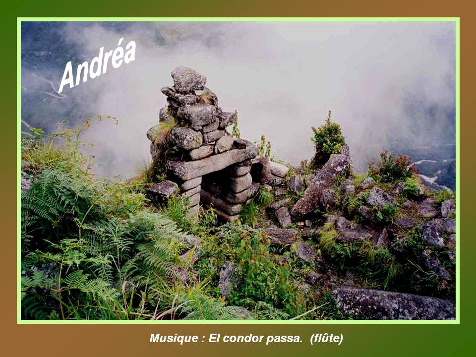 Andréa Musique : El condor passa. (flûte)