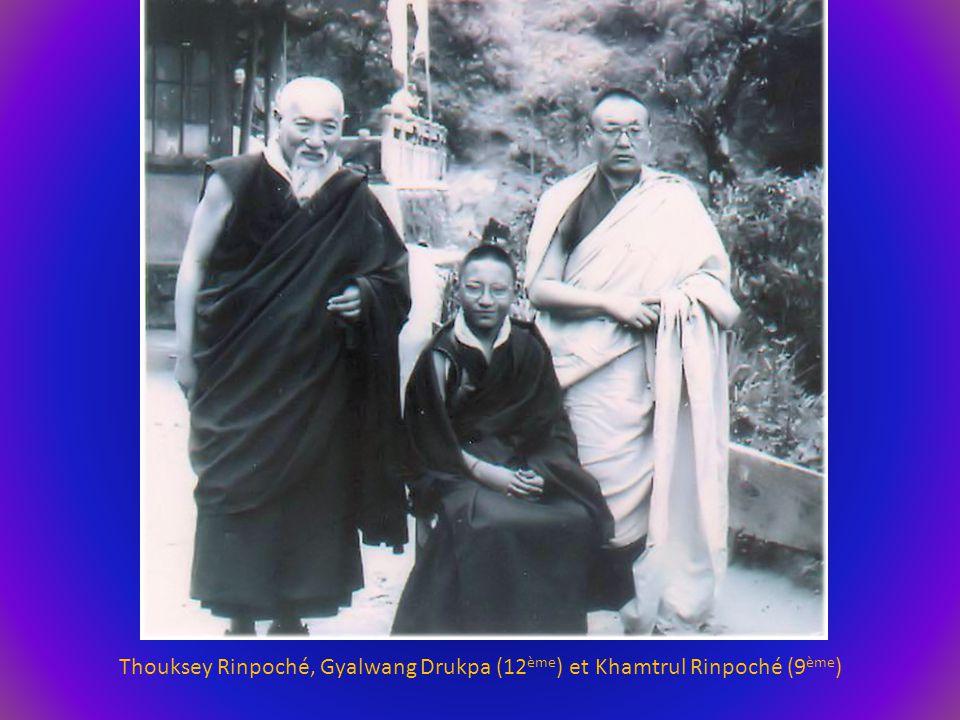 Thouksey Rinpoché, Gyalwang Drukpa (12ème) et Khamtrul Rinpoché (9ème)