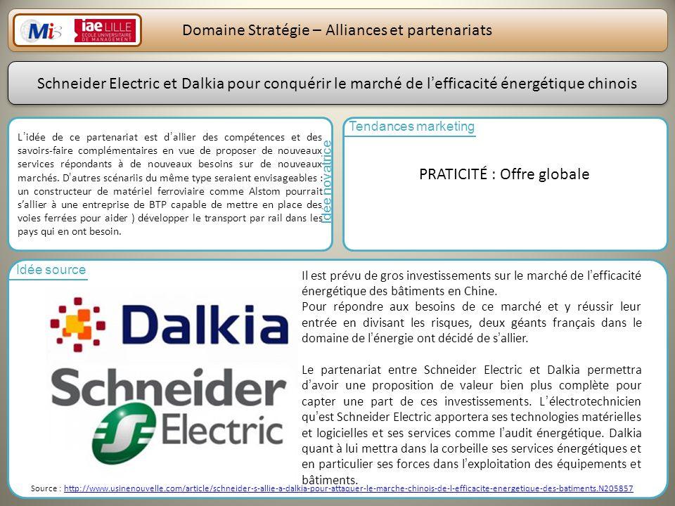 Domaine Stratégie – Alliances et partenariats