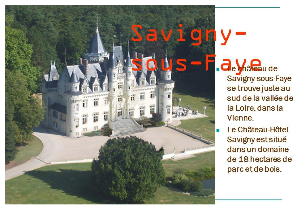 Savigny-sous-Faye Le château de Savigny-sous-Faye se trouve juste au sud de la vallée de la Loire, dans la Vienne.