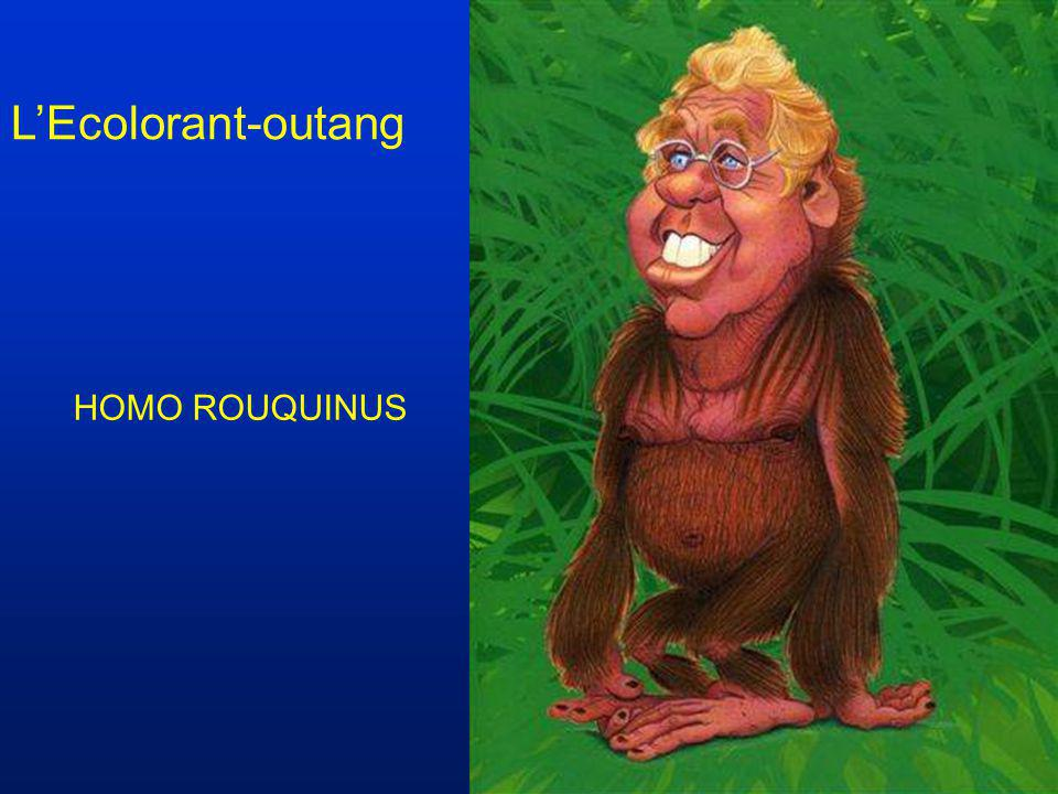 L'Ecolorant-outang HOMO ROUQUINUS
