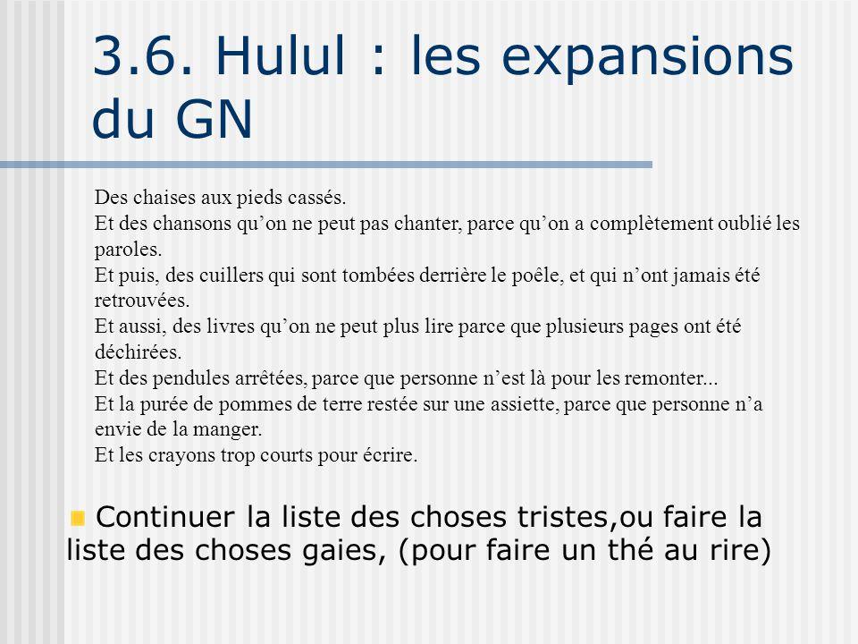 3.6. Hulul : les expansions du GN