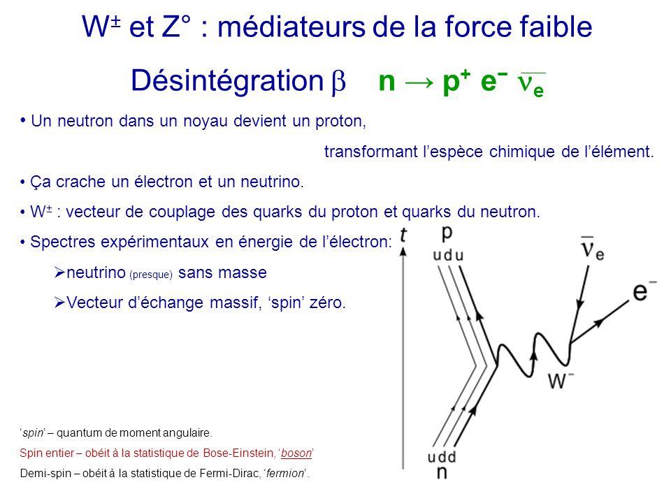 W± et Z° : médiateurs de la force faible Désintégration b n → p+ e− ne