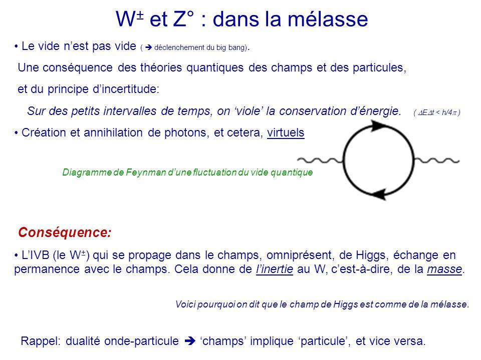 W± et Z° : dans la mélasse