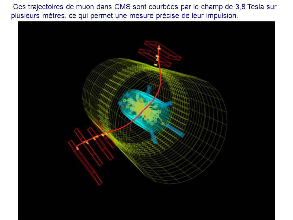 Ces trajectoires de muon dans CMS sont courbées par le champ de 3,8 Tesla sur plusieurs mètres, ce qui permet une mesure précise de leur impulsion.