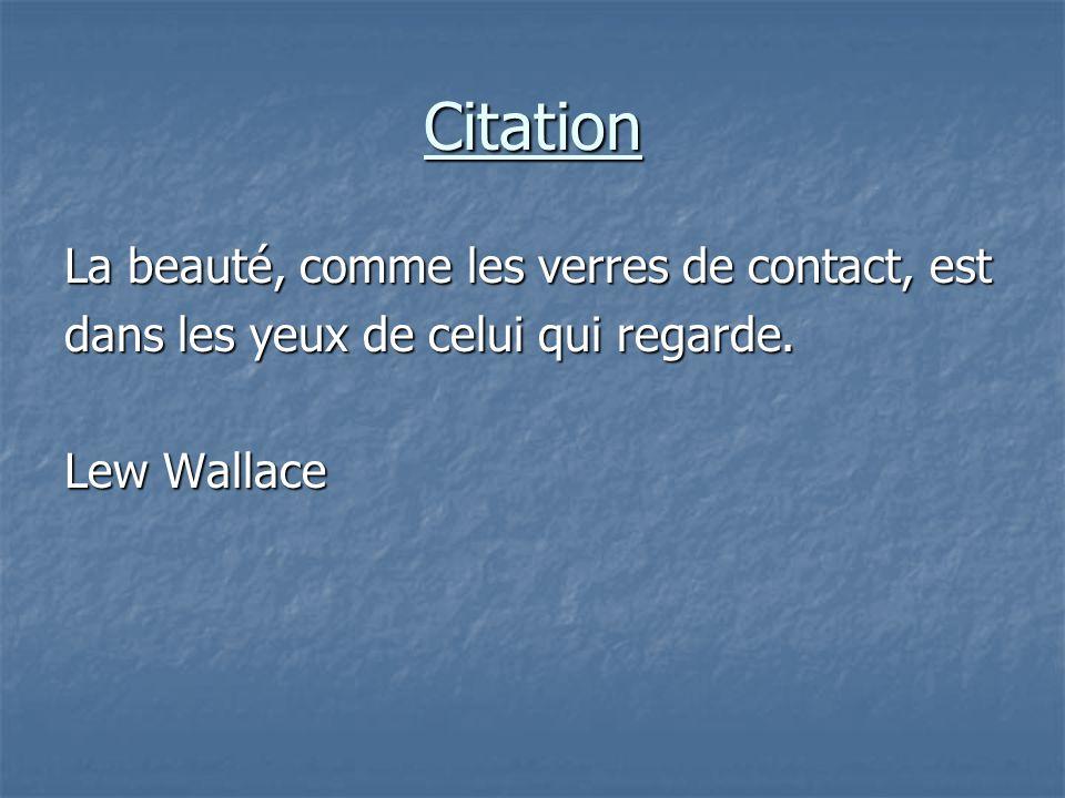Citation La beauté, comme les verres de contact, est dans les yeux de celui qui regarde.