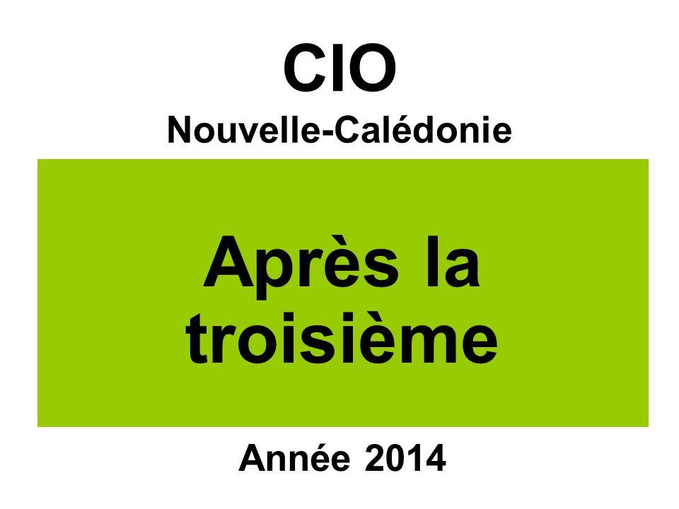 CIO Nouvelle-Calédonie