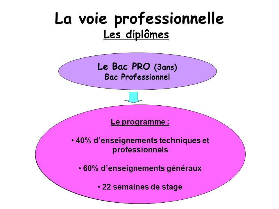 La voie professionnelle