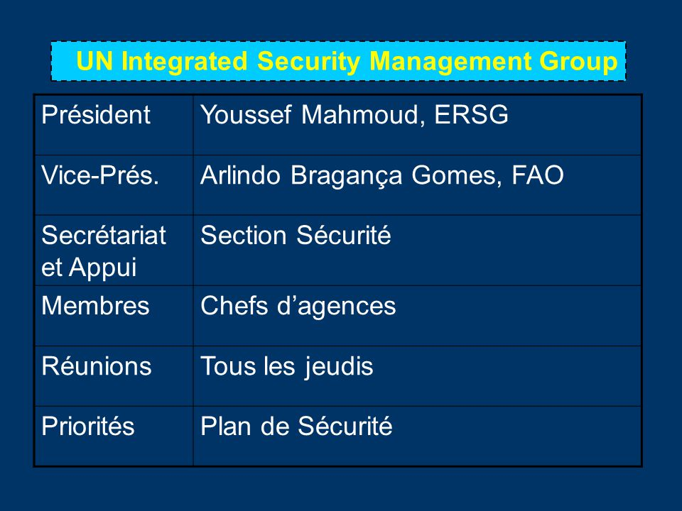 UN Integrated Security Management Group