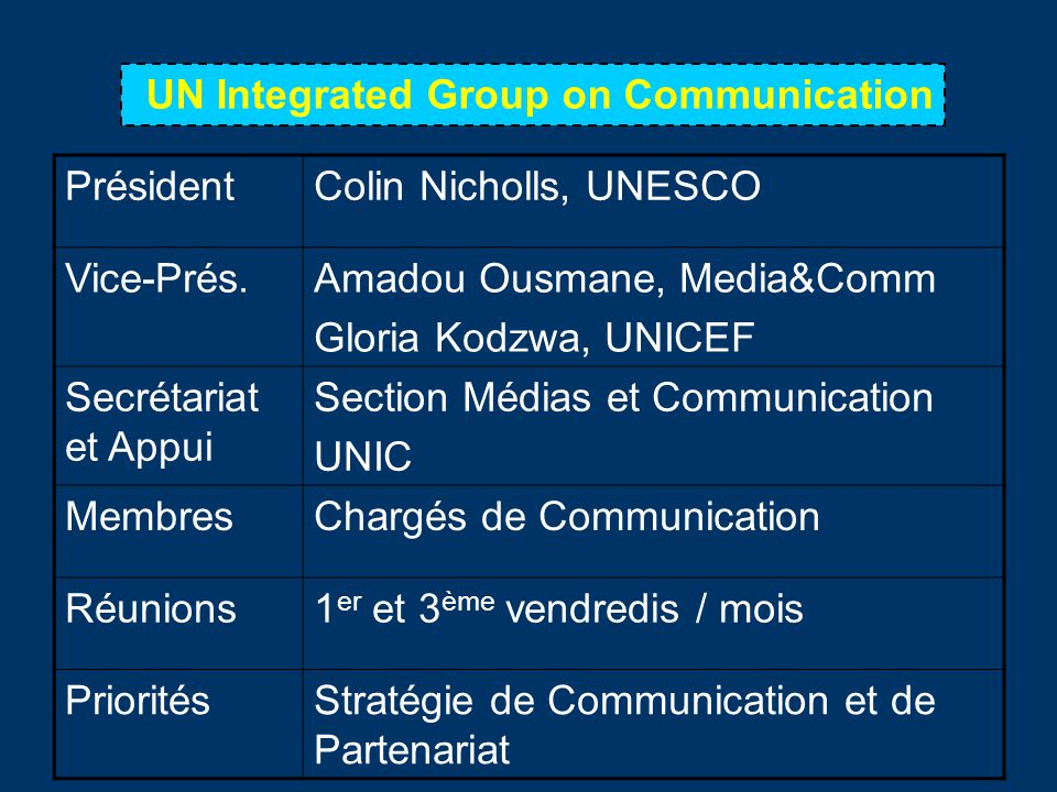 UN Integrated Group on Communication