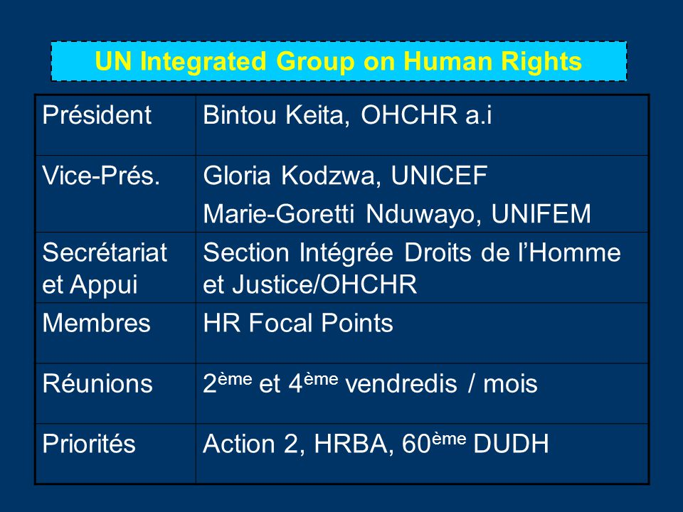 UN Integrated Group on Human Rights
