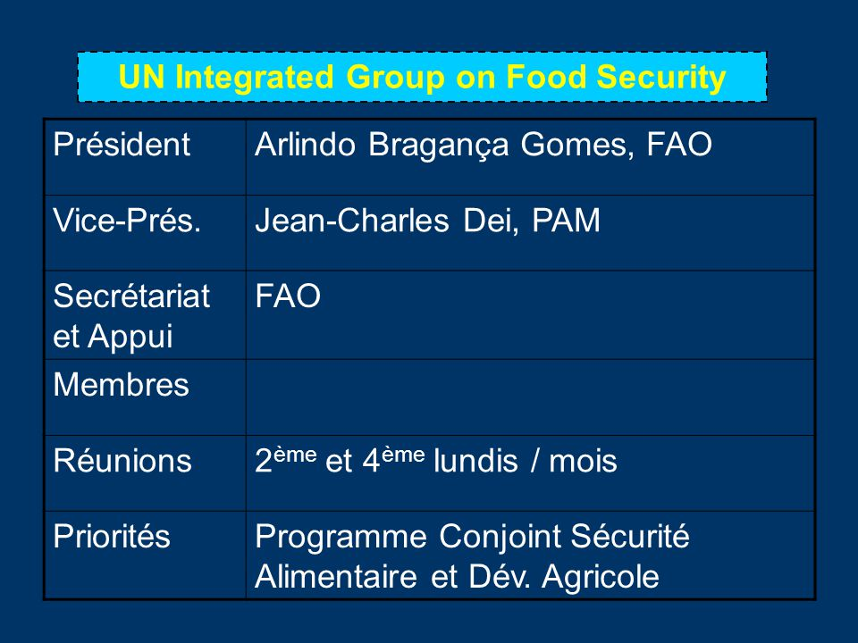 UN Integrated Group on Food Security