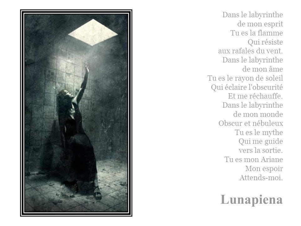 Dans le labyrinthe de mon esprit Tu es la flamme Qui résiste aux rafales du vent.