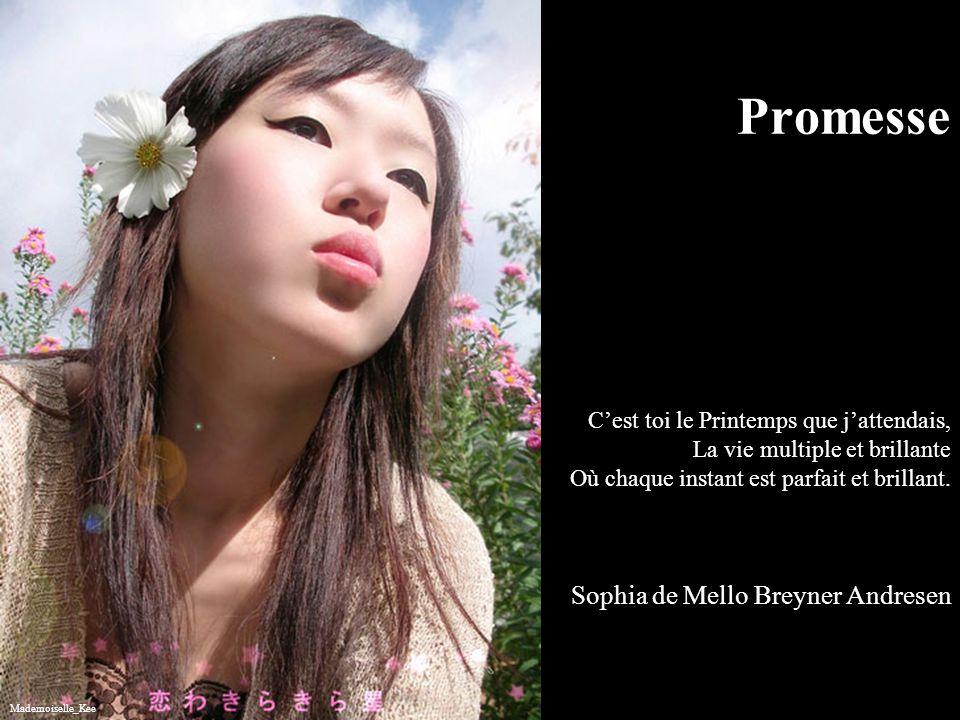 Promesse C'est toi le Printemps que j'attendais, La vie multiple et brillante Où chaque instant est parfait et brillant. Sophia de Mello Breyner Andresen