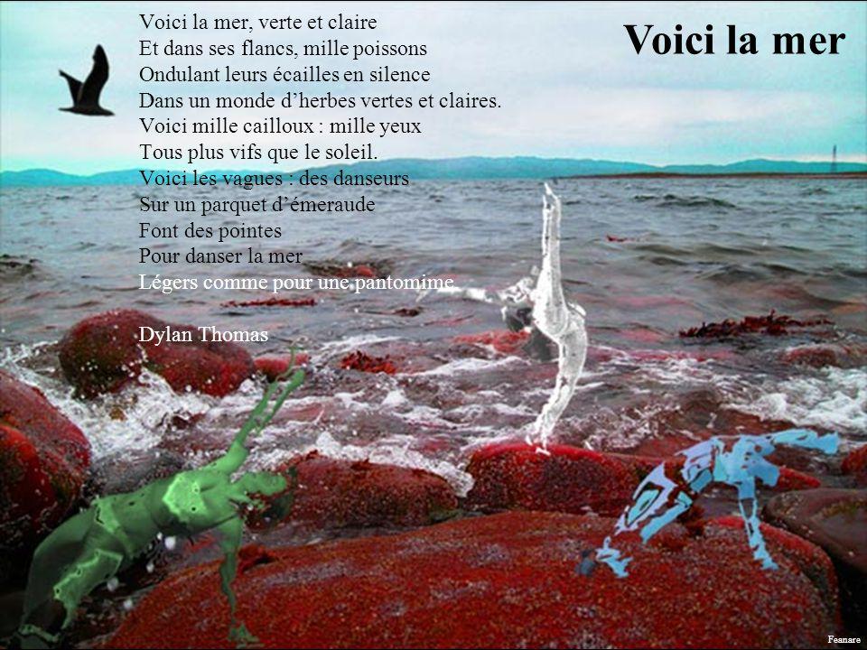 Voici la mer, verte et claire Et dans ses flancs, mille poissons Ondulant leurs écailles en silence Dans un monde d'herbes vertes et claires. Voici mille cailloux : mille yeux Tous plus vifs que le soleil. Voici les vagues : des danseurs Sur un parquet d'émeraude Font des pointes Pour danser la mer Légers comme pour une pantomime. Dylan Thomas