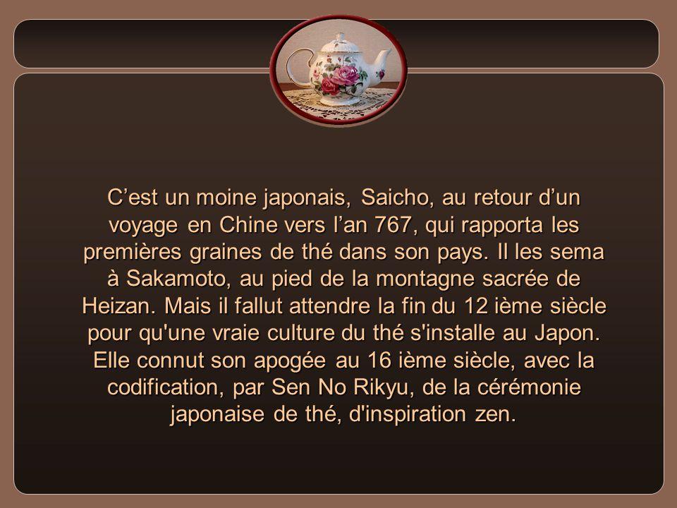 C'est un moine japonais, Saicho, au retour d'un voyage en Chine vers l'an 767, qui rapporta les premières graines de thé dans son pays.