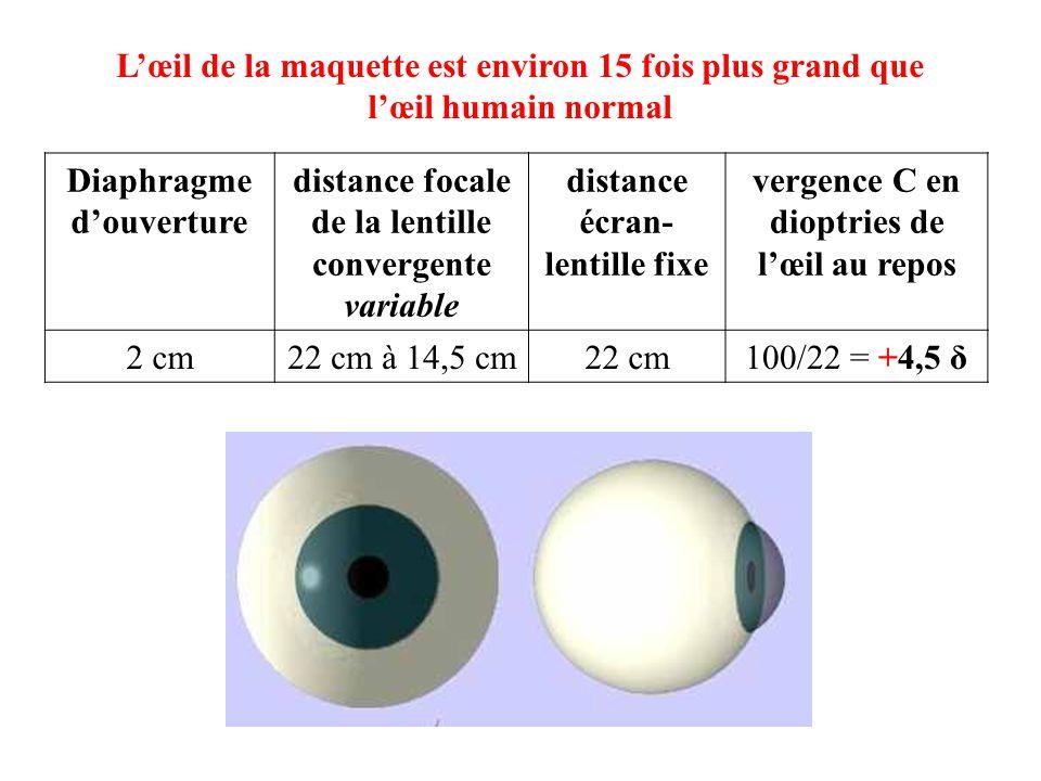 L'œil de la maquette est environ 15 fois plus grand que