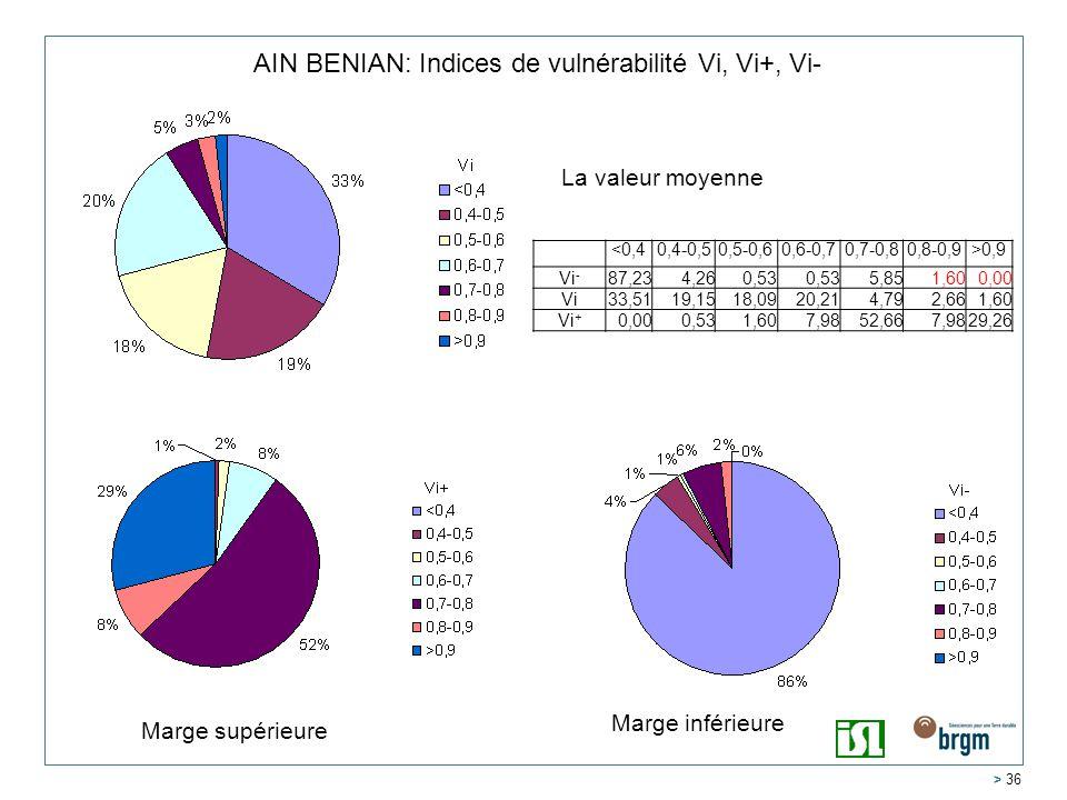 AIN BENIAN: Indices de vulnérabilité Vi, Vi+, Vi-