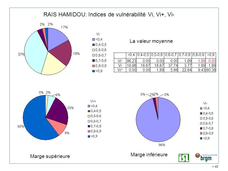 RAIS HAMIDOU: Indices de vulnérabilité Vi, Vi+, Vi-